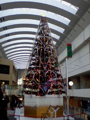 クリスマスツリー横浜